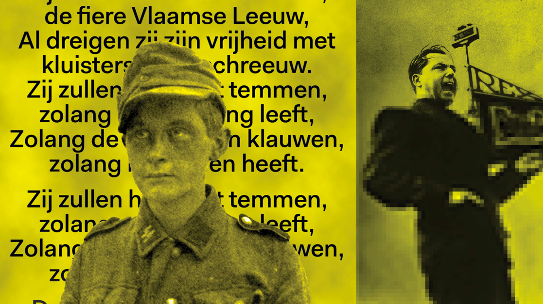 Image Article Yellow