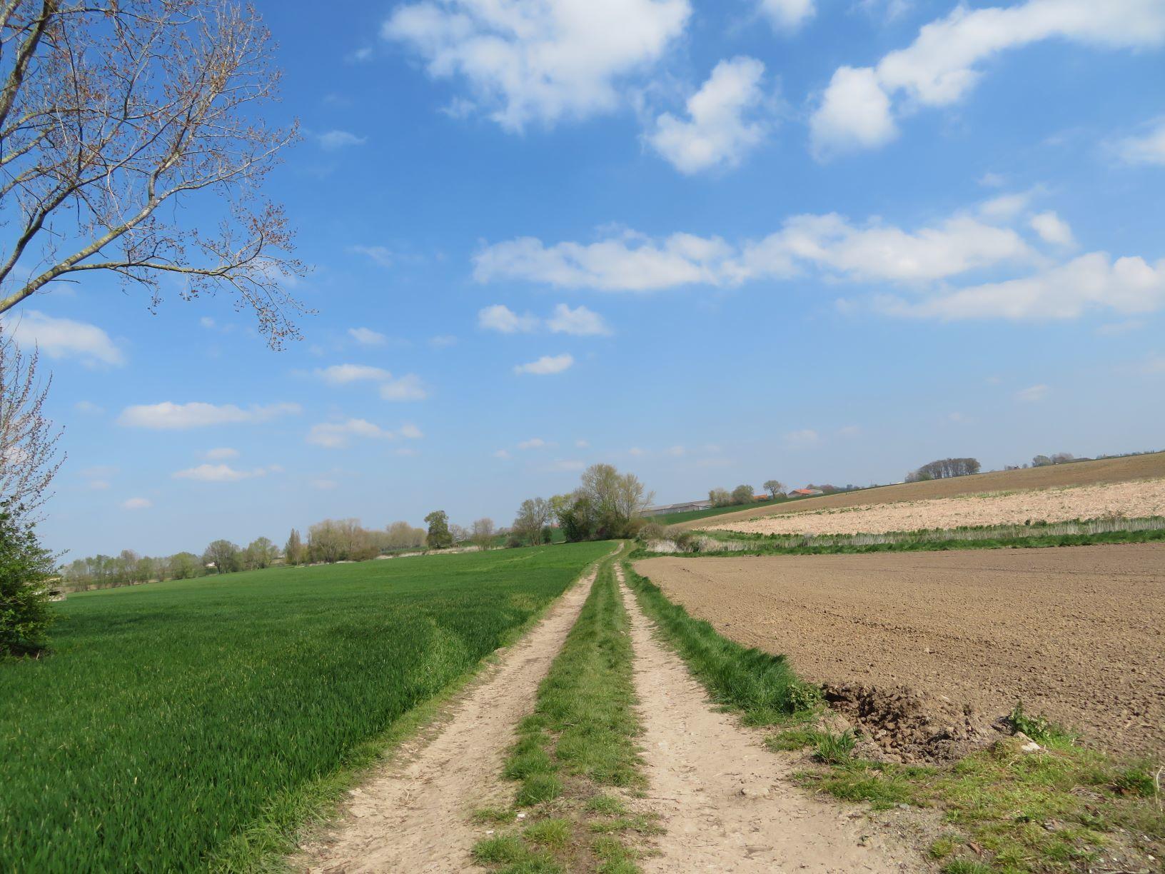 VIII-2-Bambeke-aardeweg