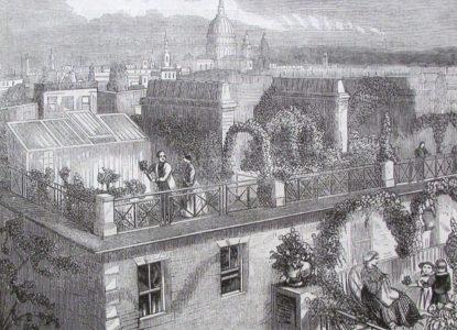 1 La Belgique Horticole 1860 221