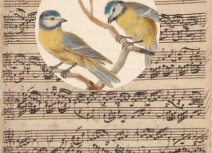Fugas en pimpelmezen Berlin State Library Bach digital archive Iconographia Zoologica een papieren dierenrijk Universiteit van Amsterdam