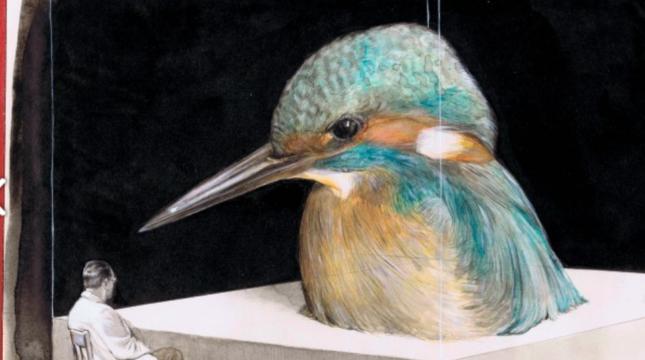 Gideon kiefer bird